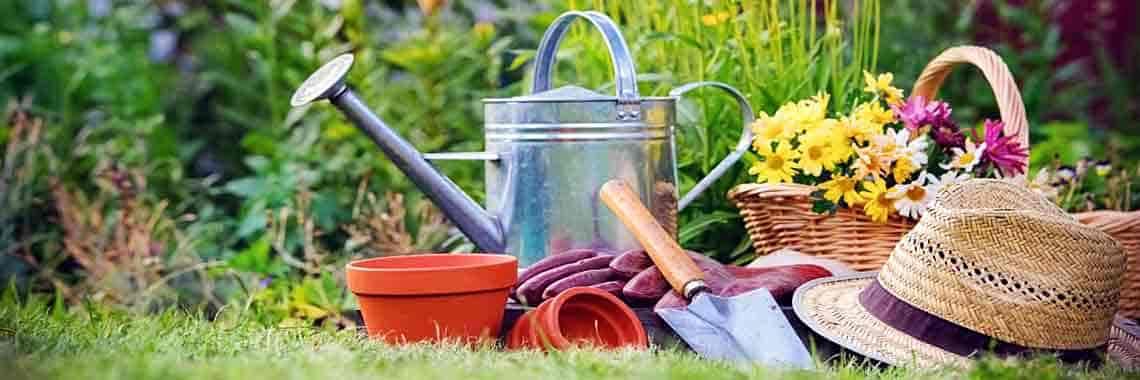Садовые растения и уход за ними