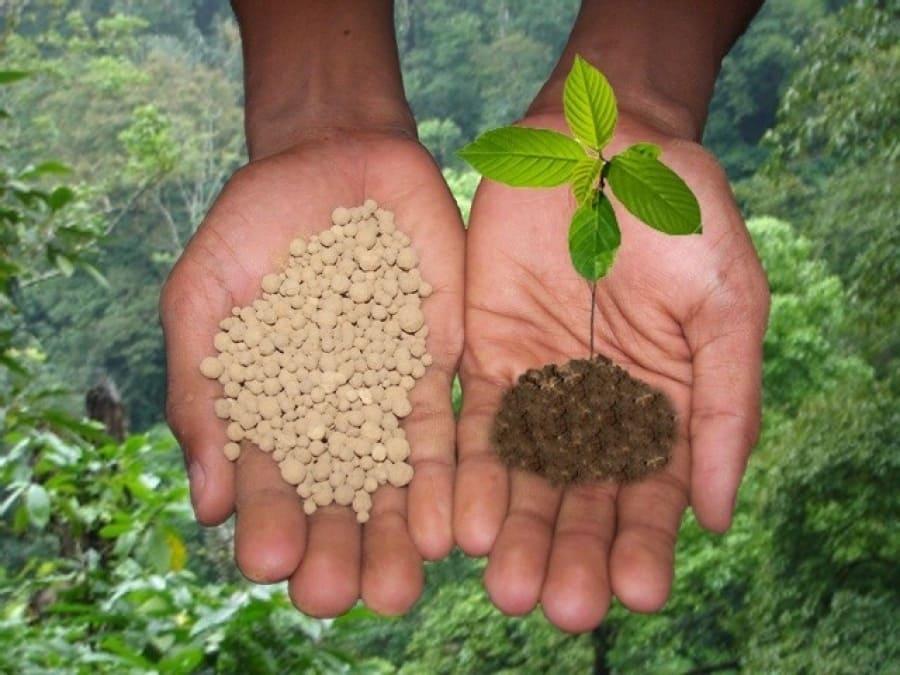 Польза и вред минеральных удобрений